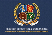 Meltzer Litigation and Consulting